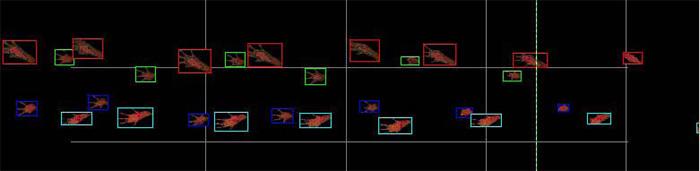 中国生物器材网--动物步态分析系统--性能参数
