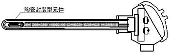 带保护管的热电阻图例