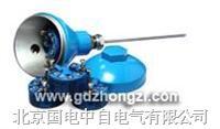 带温度变送器热电偶(阻)
