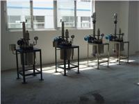 常规电加热实验室反应釜 GSH