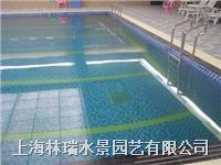 游泳池水处理维护 无