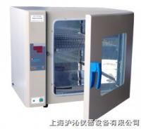 电热恒温培养箱/恒温培养箱/DH6000 DH6000