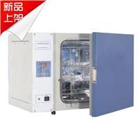 电热恒温培养箱DHP-9032B(出口型) DHP-9032B